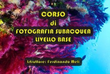 Corso di Fotografia Subacquea Livello Base a Marettimo 11-12-13-14 Luglio 2019